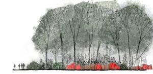 JDP Passchendaele zonnebeke © Projet coupe WANGON LANDSCAPING